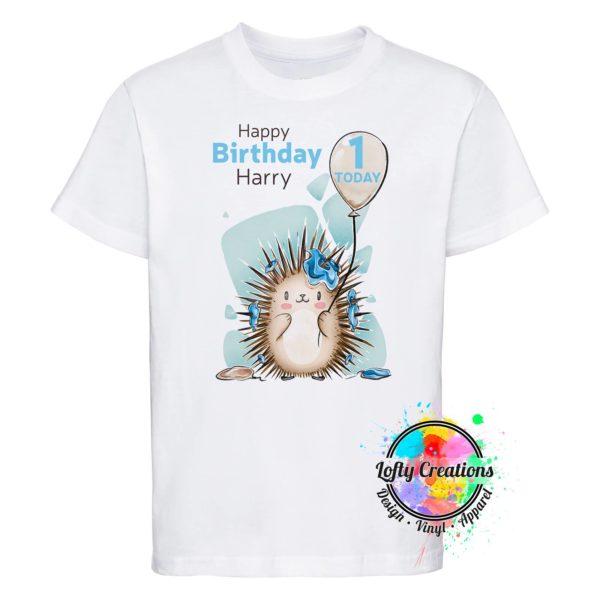 Baby Hedgehog Boy 3